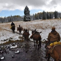 Code of the West Outfitters, LLC
