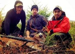 Southeast Alaska Sitka Blacktailed Deer  2018-01-21