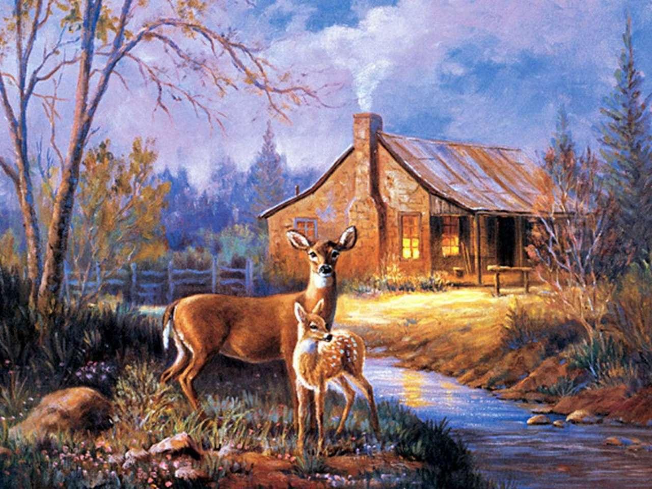 Brian deer wallpapersdeer wallpaperwhitetail deer wallpaperdeer brian deer wallpapersdeer wallpaperwhitetail deer wallpaperdeer hunting g huntpost voltagebd Images