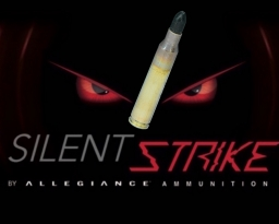 556 110gr SilentStrike