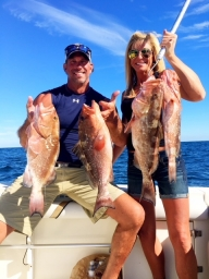 Gulf Fishing out of St. Petersburg, FL 2018-01-17