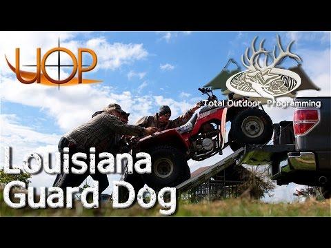 Louisiana Guard Dog Review - 4 wheeler / ATV transport made easy