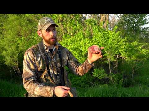 Woodhaven Cherry Oak Classic Call | Cabela's Turkey Roost