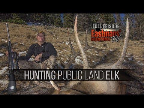 Hunting Public Land Trophy Elk with Guy Eastman