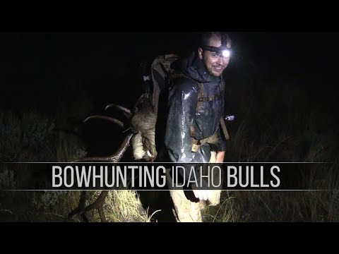 DIY Archery Elk Hunt in Idaho