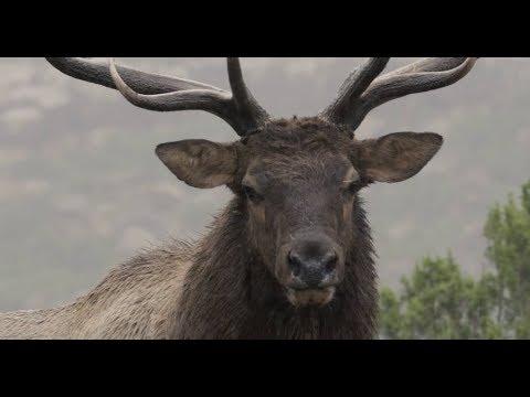 2018 Badlands Film Festival Presented by Garmin