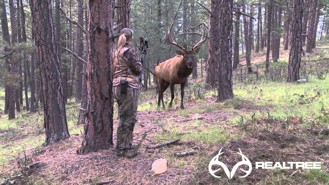 15-Yard Files: Female Bowhunter Stares Down Giant Bull Elk at 4 Yards