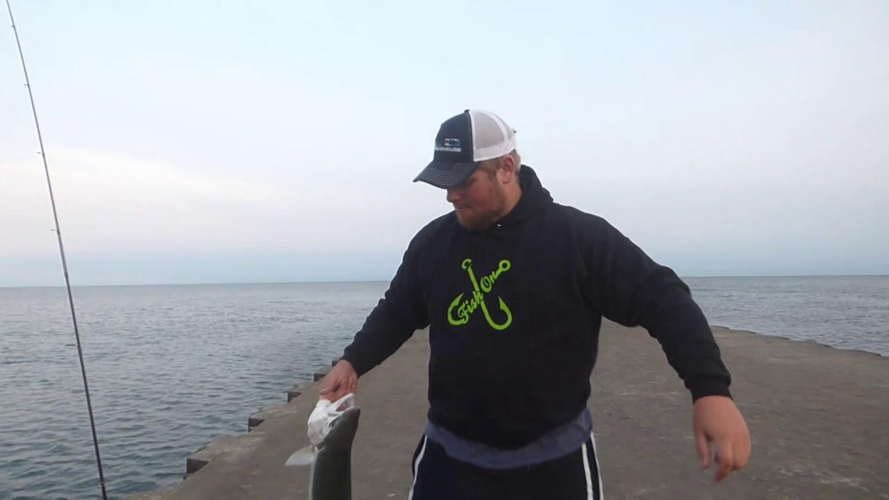 Pier fishing STEELHEAD easy limit