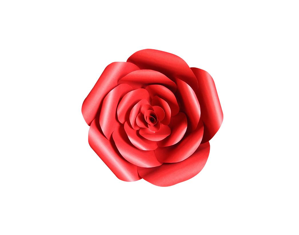 Craft dcor giant red paper flowers backdrop hweh arts rose mightylinksfo
