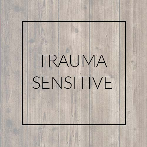 Trauma-Sensitive