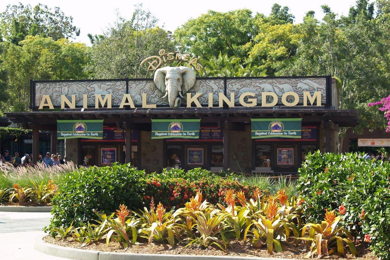 Entrada Animal Kingdom