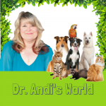 All About….Three Easy Steps to Better Animal Communication