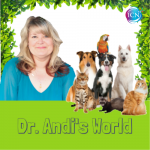 The Rx For Out Creating Your Veterinarian ~ Dr. Andi's World