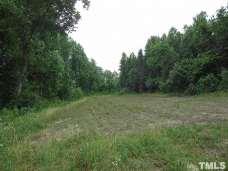 47 Acres Old Halifax Road , Louisburg, NC 27597 - Home for