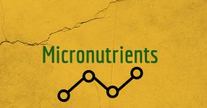 micronutrients for breastfeeding