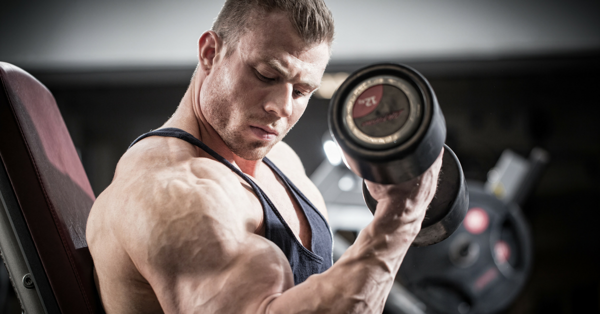build muscle and lose fat