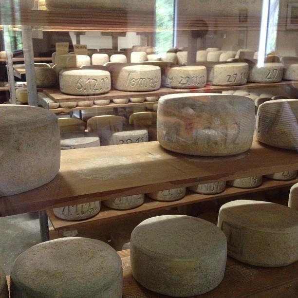 Bruny Island Cheese Company restaurant