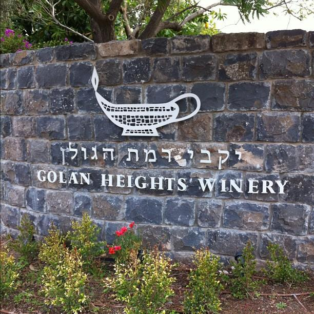 Golan Heights Winery (יקבי רמת הגולן) restaurant