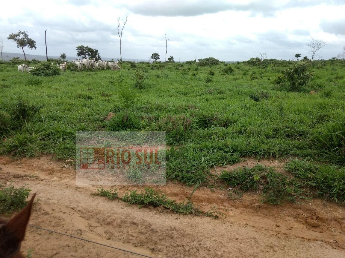 Fazenda a Venda no bairro Rural  em Bom Jesus das Selvas - MA.  - 00253