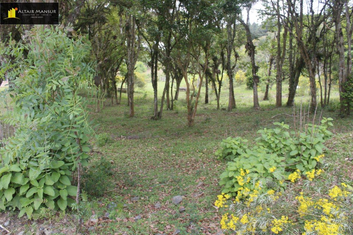 Fazenda/sítio/chácara/haras com 1 Dormitórios à venda, 135.000 m² por R$ 650.000,00
