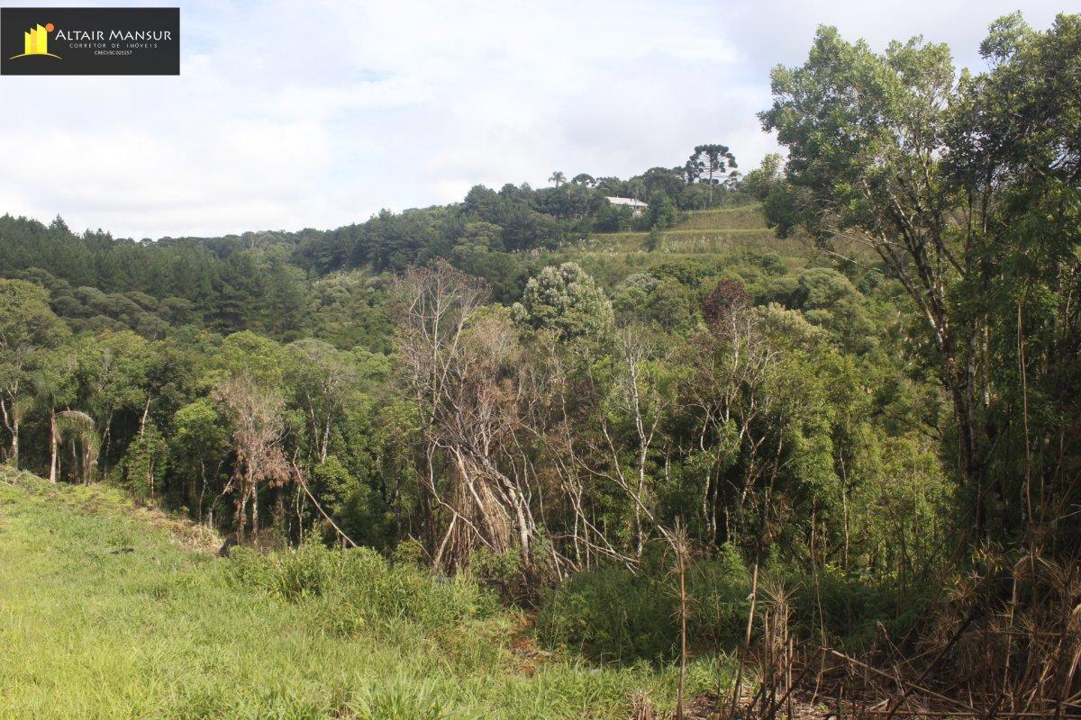 Terreno/Lote à venda, 6.050 m² por R$ 90.000,00
