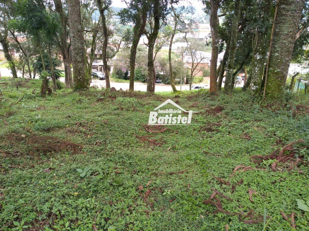 Terreno a Venda no bairro Jardim Santa Nely em Campo Largo - PR.  - TE0067