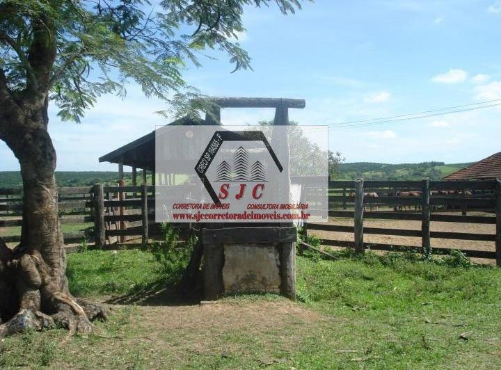 Fazenda a Venda no bairro Rural em Álvaro de Carvalho - SP.  - 561