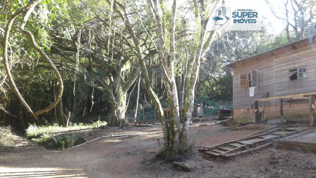 Sítio a Venda no bairro Centro em Turuçu - RS. 1 banheiro, 2 dormitórios, 1 vaga na garagem, 1 cozinha,  área de serviço,  sala de estar,  sala de jan