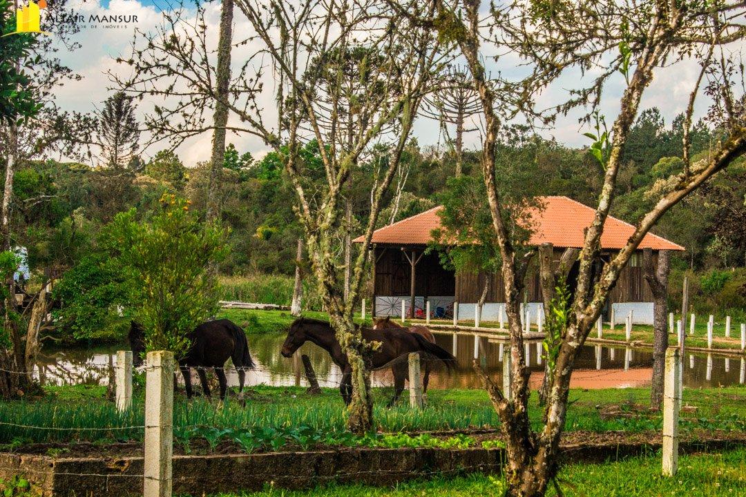 Fazenda/sítio/chácara/haras à venda  no Centro - Tijucas do Sul, PR. Imóveis