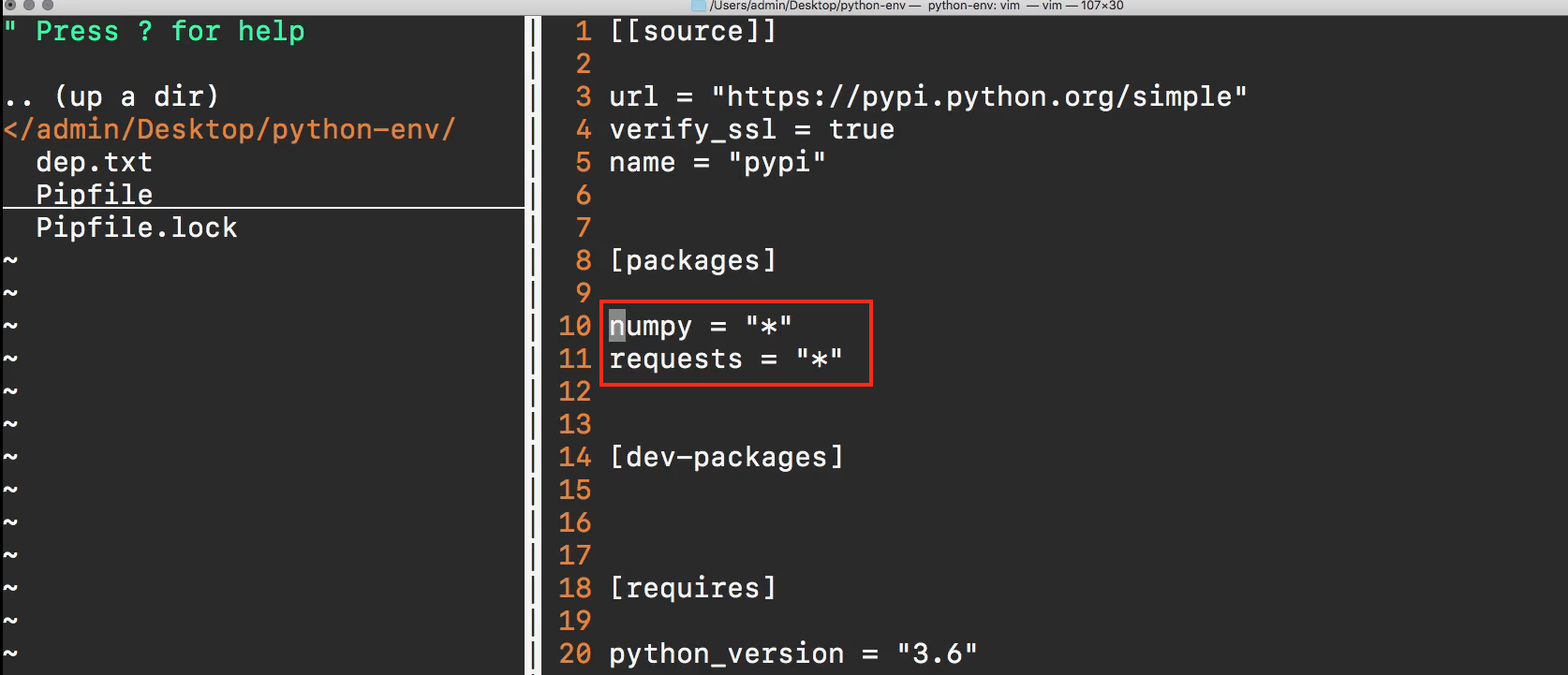 Guide to Pipenv for Managing a Python Project's Packages and