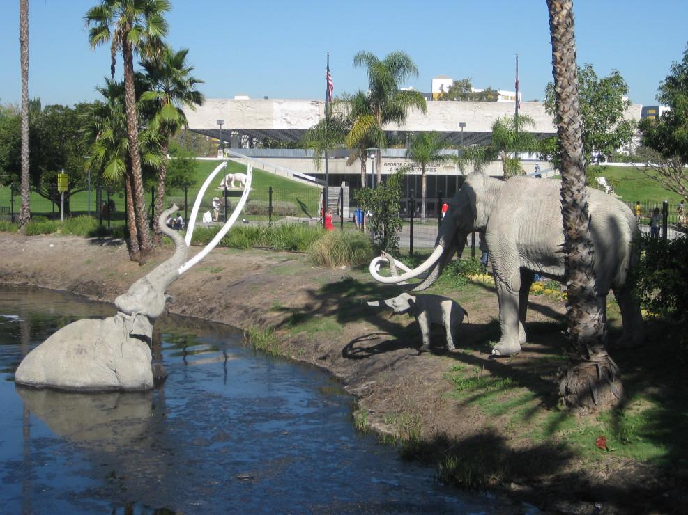 Starline Tours of Anaheim