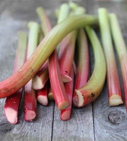 Organic Rhubarb Stalks