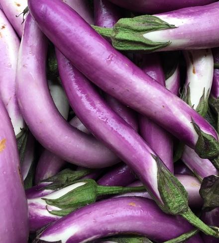Oriental Eggplant