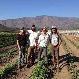 Solidarity Farm Coop