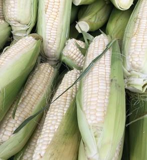 Corn-limit 1 share