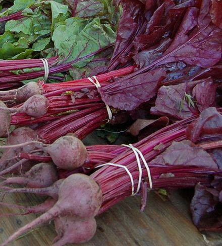 """Bull's Blood"" Beets"