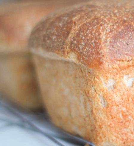 GF DF Hawaiian Sweet Bread