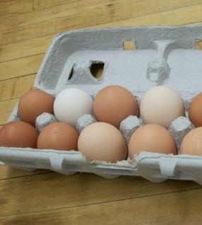 Eggs-Jumbo