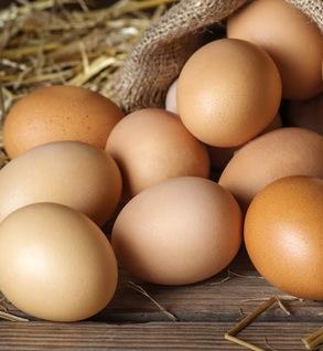 Eggs (Chicken)