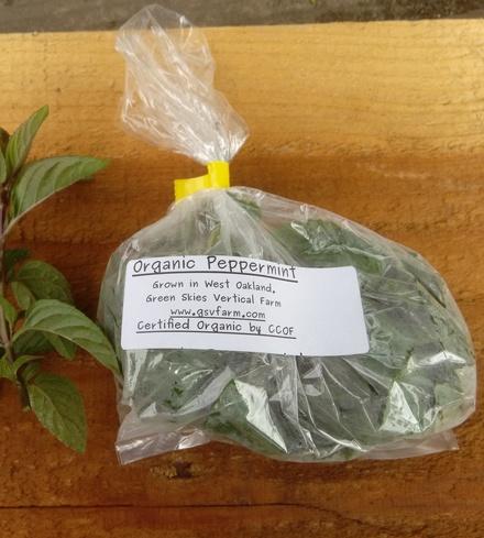 Organic Peppermint