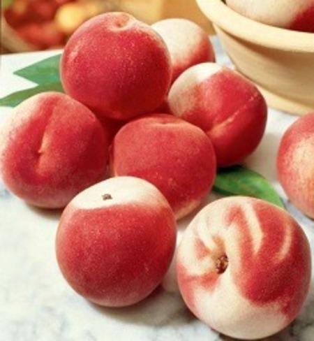 Blushing Star Peaches