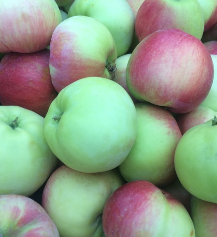 Apples, Wynoochee