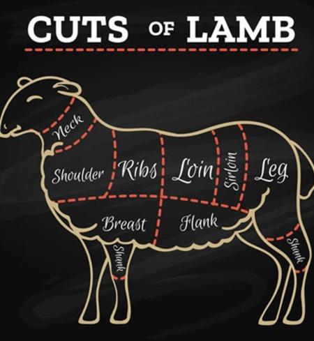 Half a Katahdin Lamb