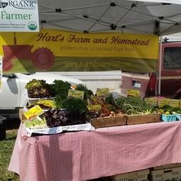 Harts Farm and Homestead