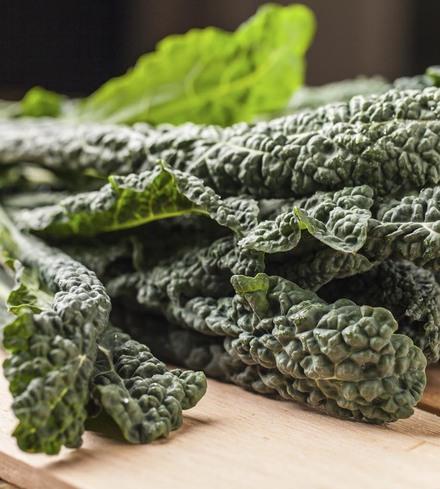 "Lacinato/""Tuscan"" Kale"