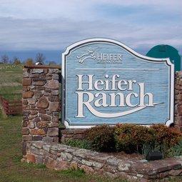 Heifer Ranch