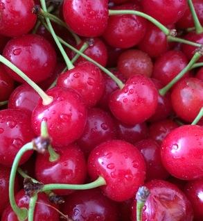 Pie Cherry
