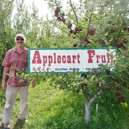 Apple Cart Fruit