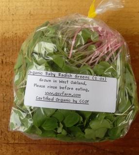 Organic Baby Radish Greens