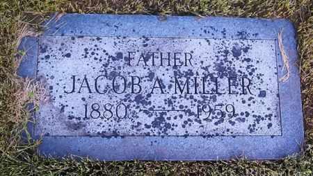 MILLER, WAYNE - Arapahoe County, Colorado | WAYNE MILLER - Colorado Gravestone Photos
